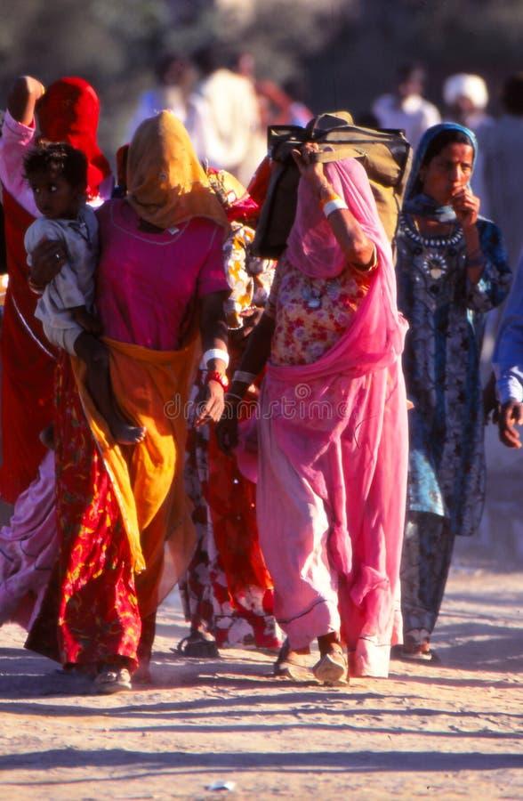 Senhoras no camelo justo, Jaisalmer, Índia imagens de stock royalty free