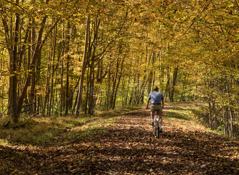 Senior adult man cycles on leaf covered trail. Senior adult caucasian man cycling away down a leaf covered Deckers Creek Rail trail near Morgantown in West royalty free stock photography