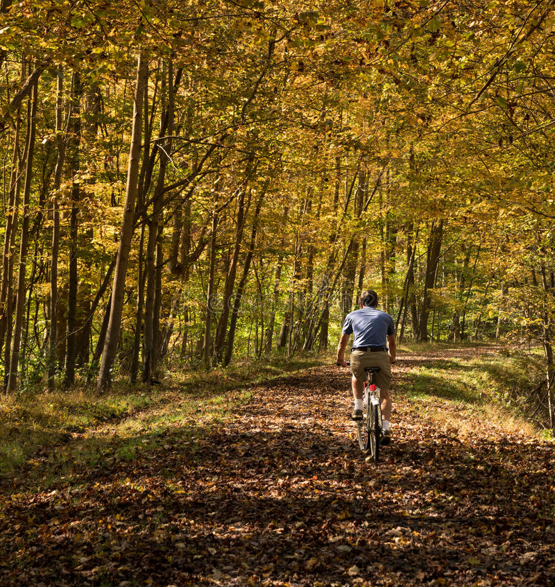 Senior adult man cycles on leaf covered trail. Senior adult caucasian man cycling away down a leaf covered Deckers Creek Rail trail near Morgantown in West royalty free stock images