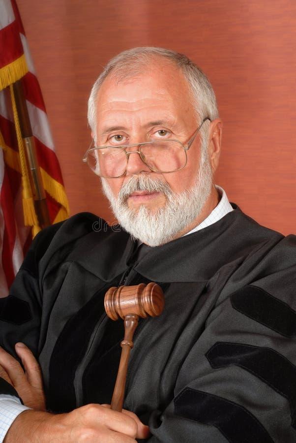 Download Senior American judge stock image. Image of legal, flag - 5084439