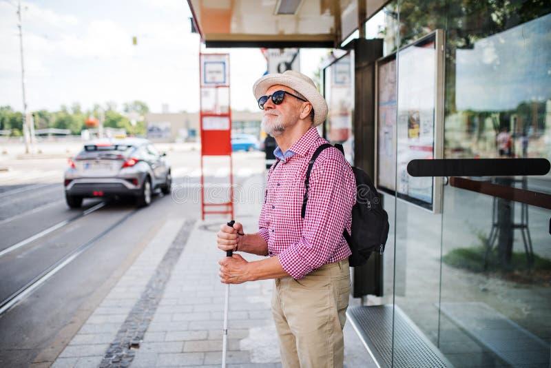 Senior blind man with white cane waiting at bus stop in city. A senior blind man with white cane waiting at bus stop in city royalty free stock photo