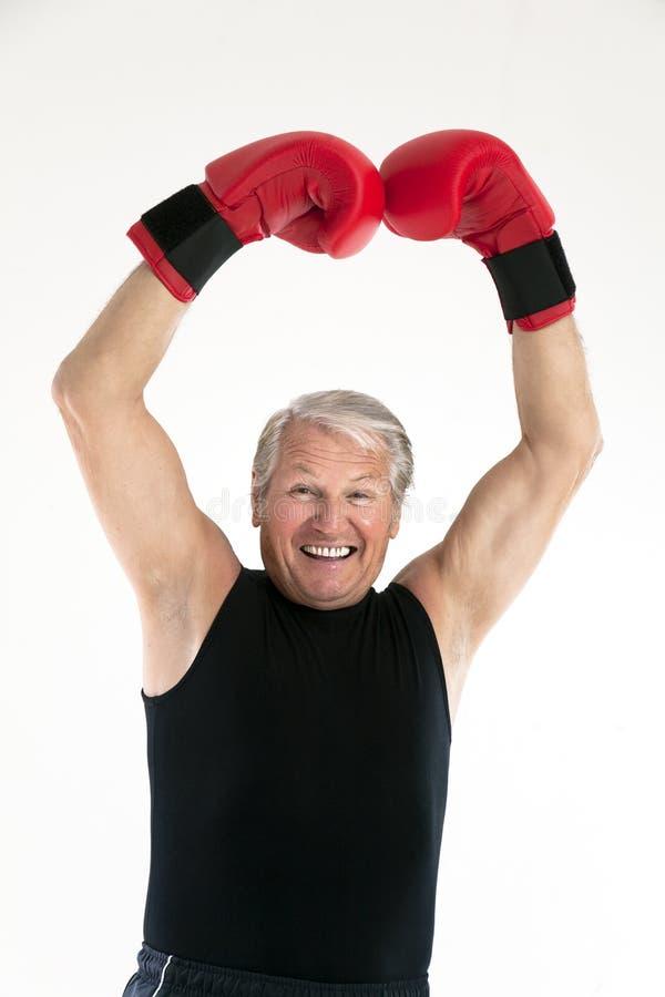 Senior boxer stock photo