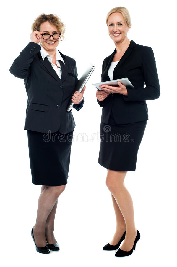 Senior business executives. Exploring business ideas. All on white background royalty free stock image