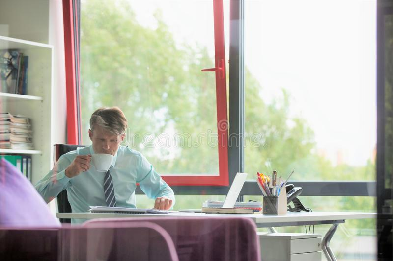 Senior businessman drinking coffee while reading document in office royalty free stock images