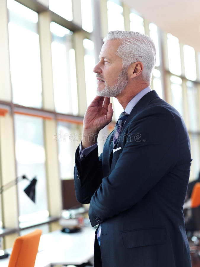 Senior business man portrait. Portrait of senior business man with grey beard and hair alone i modern office indoors stock photography