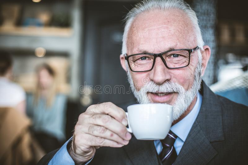 Senior businessmen at coffee break. Portrait. stock images