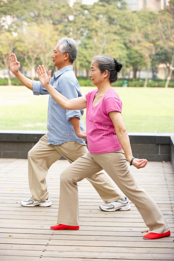 Senior Chinese Couple Doing Tai Chi In Park royalty free stock images