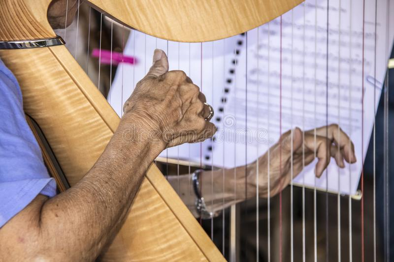 Senior citizen aged woman playing the harp with one wrinkled hand in clear focus and other hand and music blurred in background - royalty free stock images
