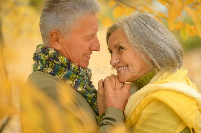 Senior couple in autumn park stock photo