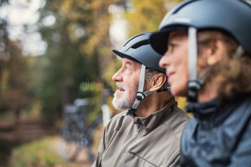 A senior couple with bicycle helmet standing outdoors in park in autumn. A happy senior couple with bicycle helmet standing outdoors in park in autumn stock image