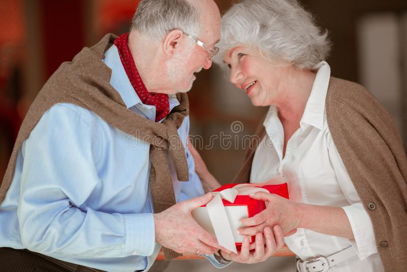 Senior Couple with Christmas Gift royalty free stock photography