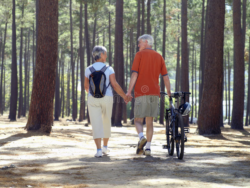 Senior couple in cycling helmets walking through wood with bicycles, holding hands, rear view stock photos