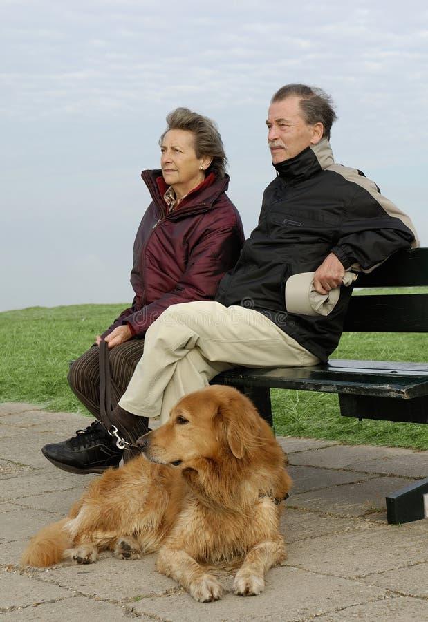 Senior couple with dog stock images