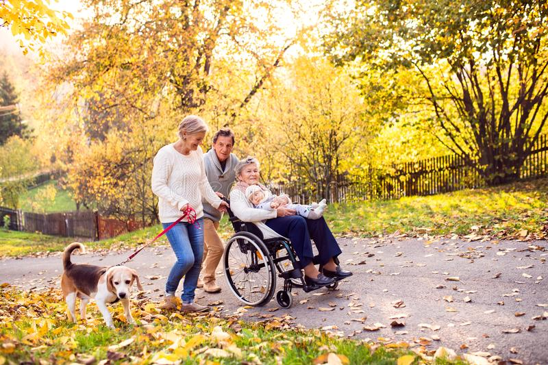 Extended family with dog on a walk in autumn nature. royalty free stock images