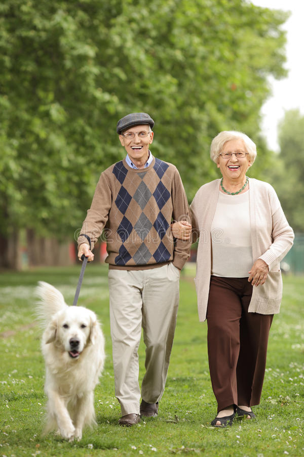 Senior couple with a dog walking in the park royalty free stock image