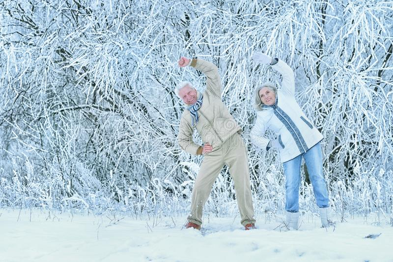 Senior couple doing exercises. Happy senior couple doing exercises at winter royalty free stock images