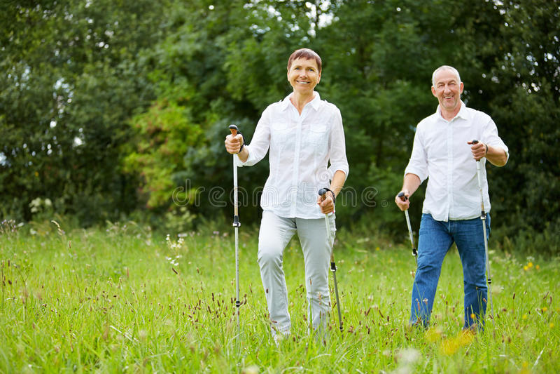 Senior couple doing nordic walking in summer royalty free stock photo