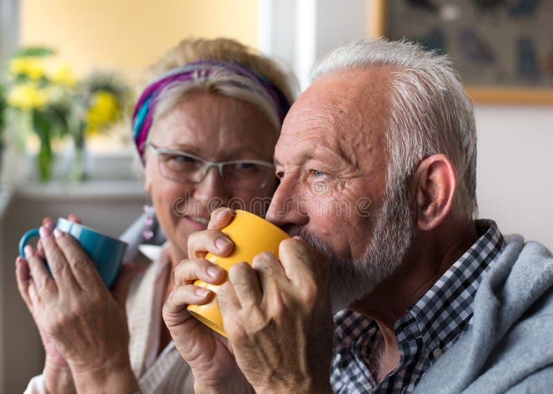 Senior couple drinking tea royalty free stock photos