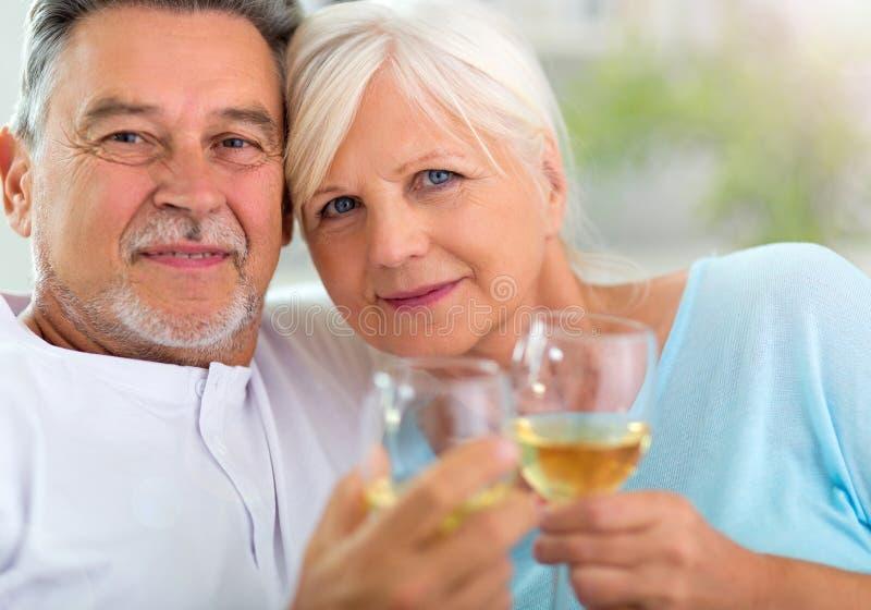 Senior couple drinking wine stock photo