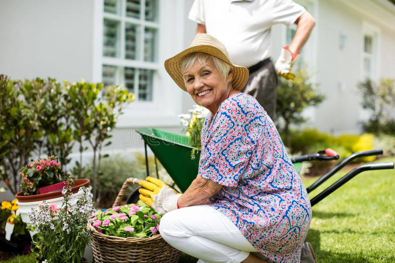 Senior couple gardening together royalty free stock photography