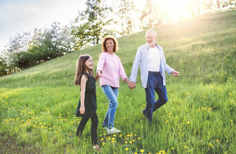 Senior couple with grandaughter outside in spring nature, walking. Cheerful senior couple with grandaughter outside in spring nature, walking stock photo