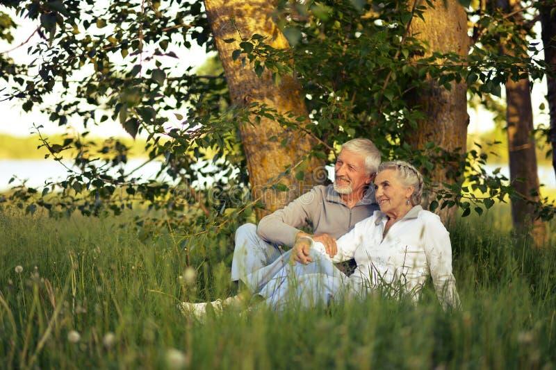 Senior couple on green meadow. Happy senior couple sitting on green meadow royalty free stock image