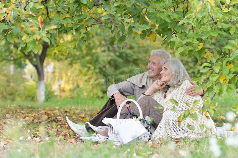 Portrait of senior couple having picnic outdoors royalty free stock images