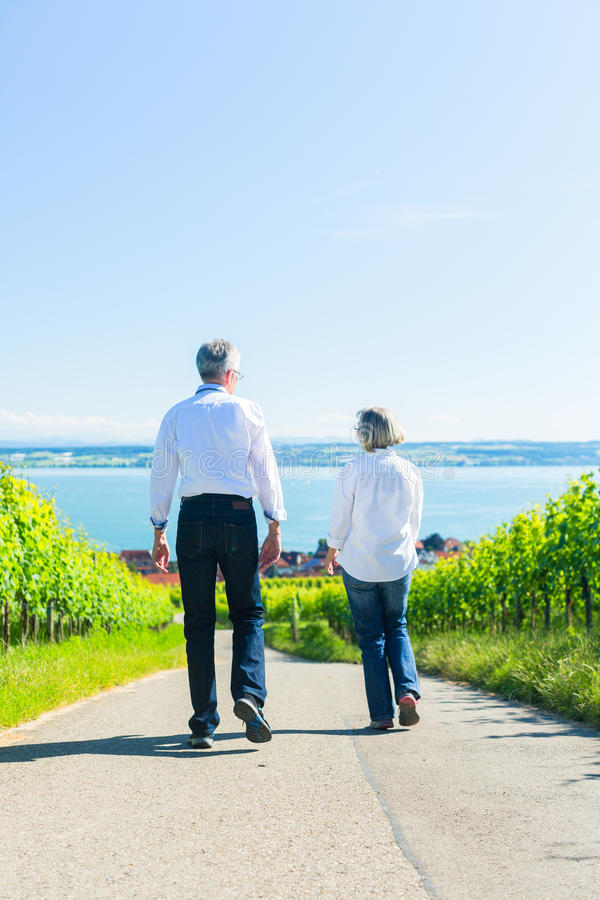 Senior couple having walk in vineyard stock photos