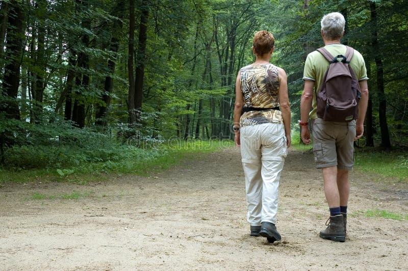 Senior couple hiking royalty free stock image