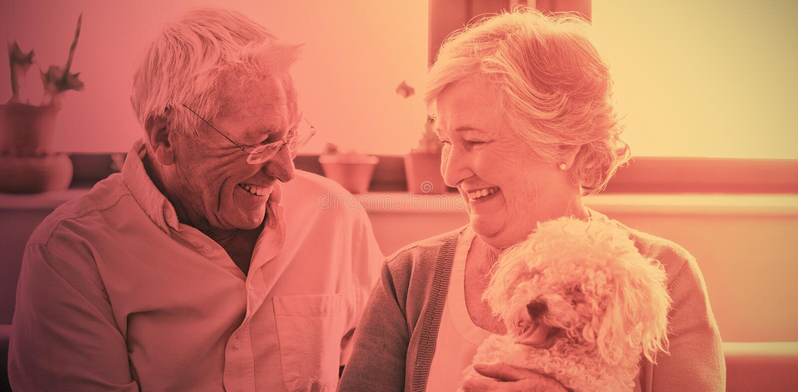 Senior couple holding a dog. In a retirement home stock photos