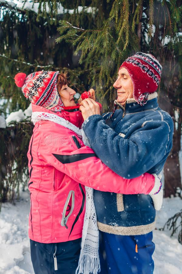 Senior couple hugging in winter forest. Man and woman walking outdoors on Valentine`s Day royalty free stock images