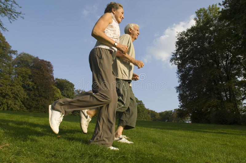 A senior couple jogging. A senior couple jogging in the park royalty free stock image