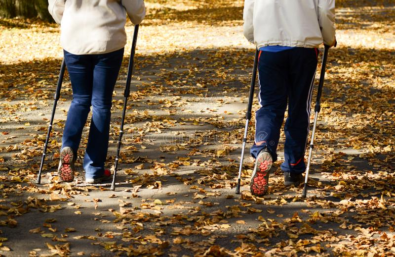 Senior couple making Nordic walking in park stock images