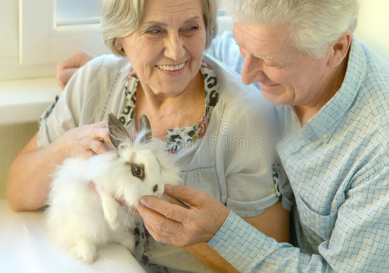 Senior couple with a rabbit stock photography