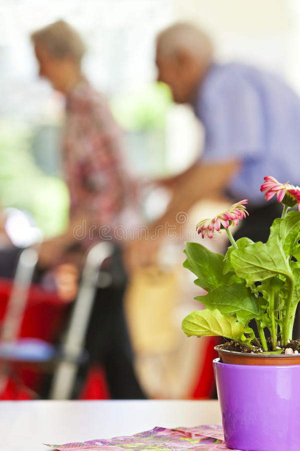 Senior couple in a retirement home. Using a wheeled walker stock image