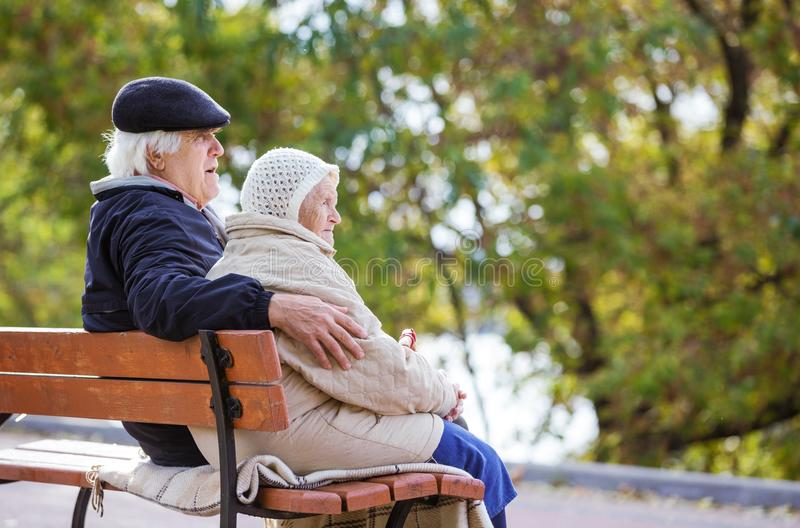 Senior couple sitting on bench in autumn park stock photography