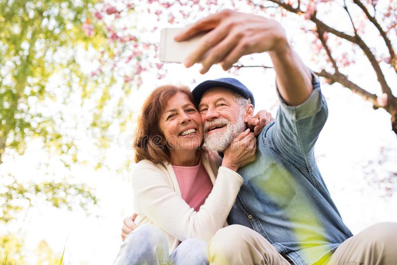 Senior couple with smartphone outside in spring nature. stock photo