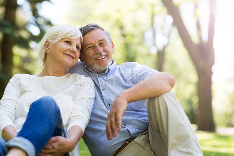 Senior couple smiling stock images
