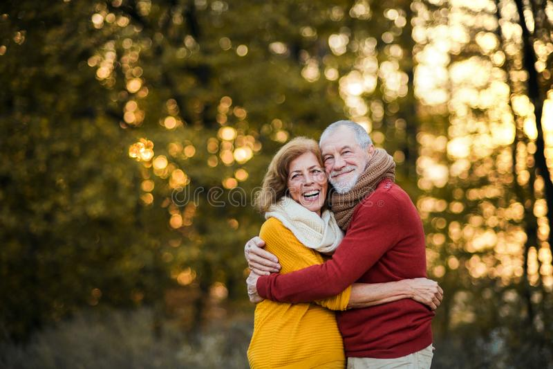 A senior couple standing in an autumn nature at sunset, hugging. Copy space. A cheerful senior couple in love standing in an autumn nature at sunset, hugging stock photo