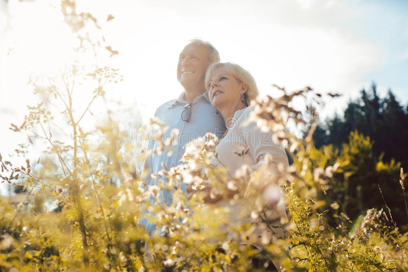 Senior couple standing side by side on a meadow. In the sunshine stock photos