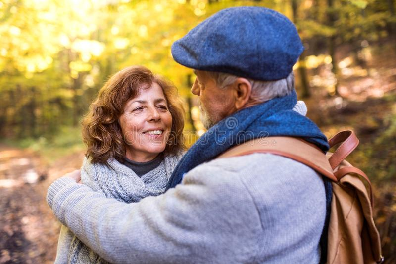 Senior couple on a walk in autumn forest. stock photography