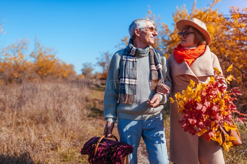 Senior couple walking in autumn forest. Middle-aged man and woman hugging and chilling outdoors stock image