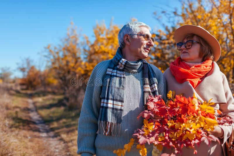 Senior couple walking in autumn forest. Middle-aged man and woman chilling outdoors stock photos