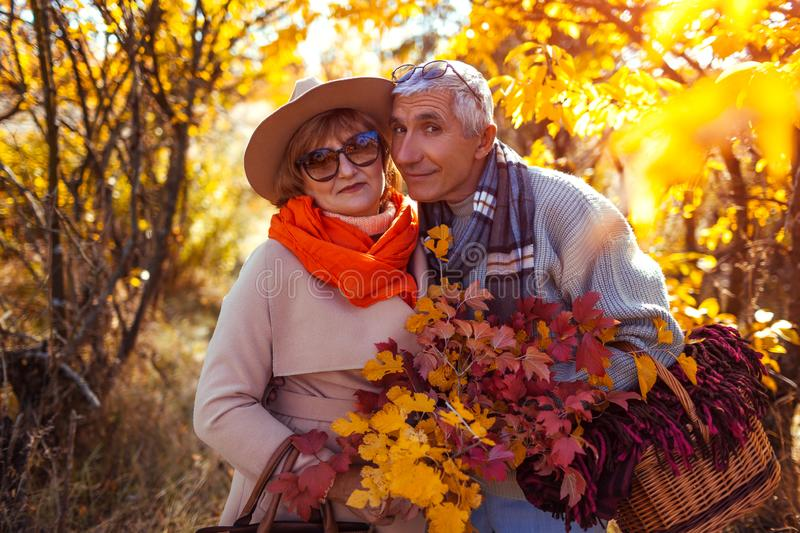 Senior couple walking in autumn forest. Middle-aged man and woman hugging and chilling outdoors stock photos
