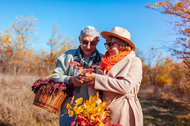 Senior couple walking in autumn forest. Middle-aged man and woman hugging and chilling outdoors stock photography