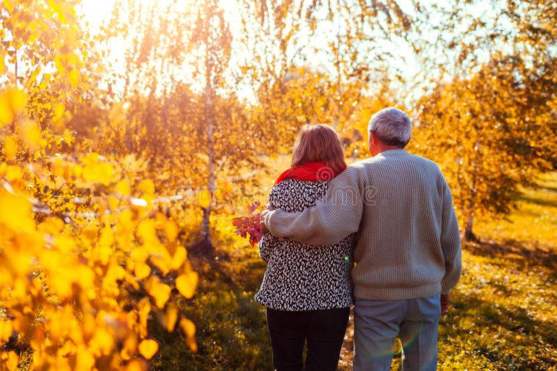Senior couple walking in autumn forest. Middle-aged man and woman hugging and chilling outdoors royalty free stock image