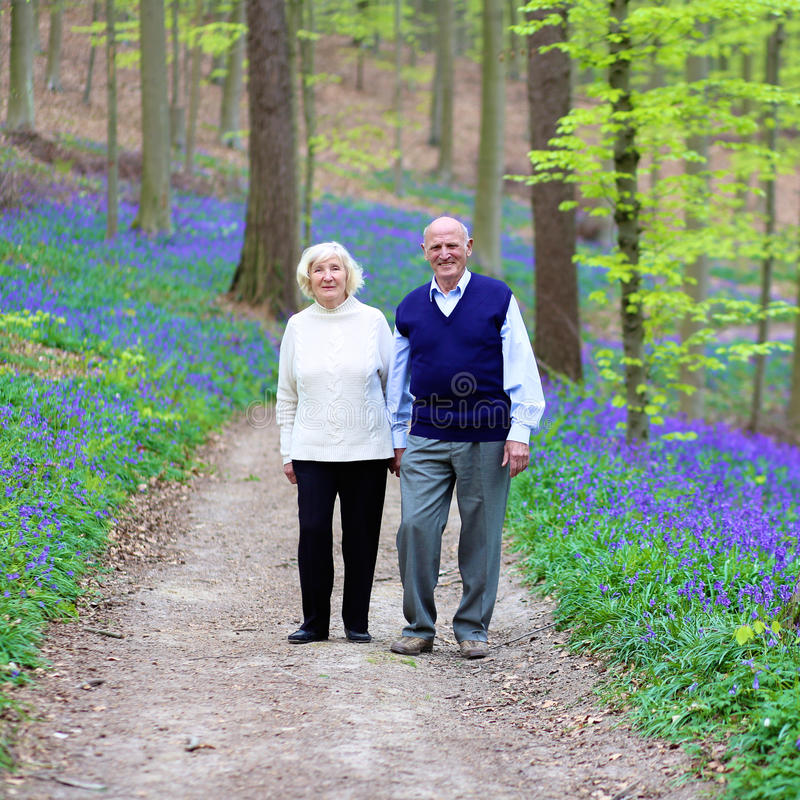 Senior couple walking in the forest royalty free stock images