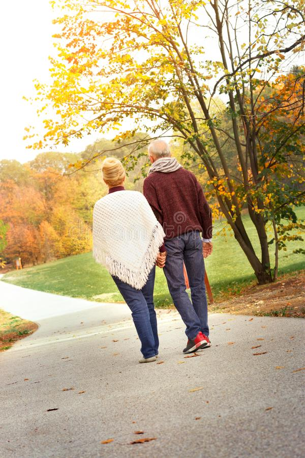 Senior couple walking together in the autumn park stock image