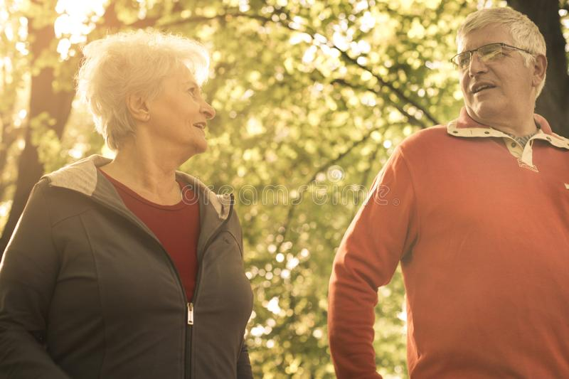 Seniors walking trough park and having conversation. royalty free stock photo