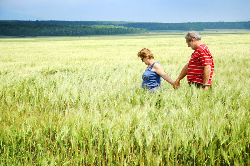 Download Senior Couple In Wheat Field Stock Photo - Image: 5905224